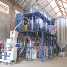 50 TPD maize flour mill machine