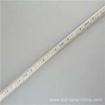 AC110V LED Tape light For Shop Home Bedroom
