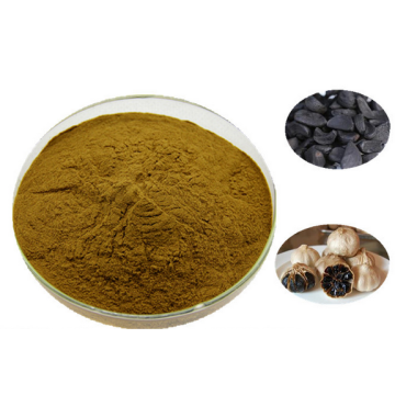 Pure Black Garlic Powder