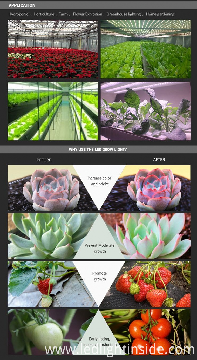 grow light led