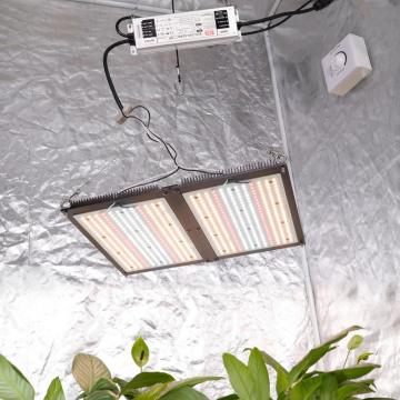 Popular Wholesale DIY Quantum Board Grow Light Kits