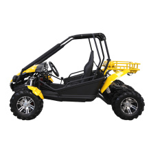 250cc engine buggy gasoline 4x2 beach go kart