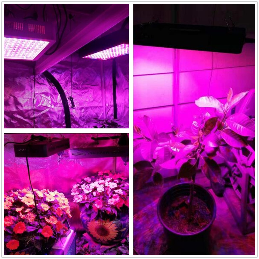 COB LED Plant Light