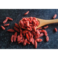 Premium Price Dried Goji Berry