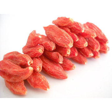 Agriculture dried fruit goji berry price