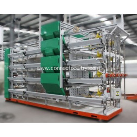 Pullets raising cage for poultry farming equipment