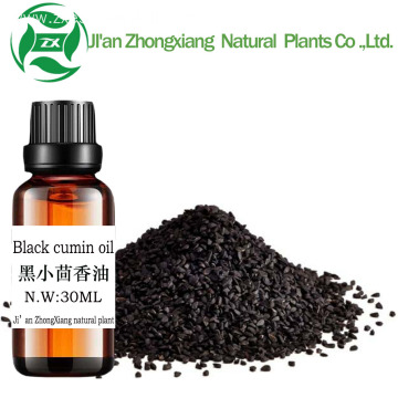 Wholesale Bulk Black Seed Cumin Oil Food Grade