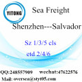 Shenzhen Port LCL Consolidation To Salvador