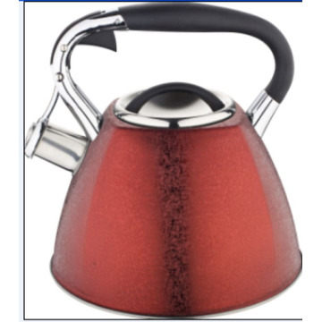 Stainess steel Water kettle with ice flower