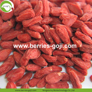 Hot Sale Super Dried Fruit Anti Age Wolfberries