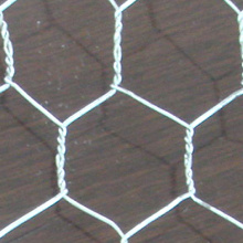 Good Quality Galvanized Hexagonal Chicken Wire Mesh