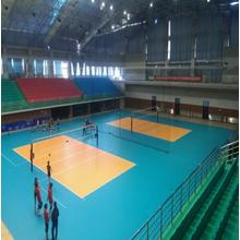 Factory Price for Anti-Slip Waterproof Volleyball Sports Flooring hot-sell indoor PVC sports floor supply to Russian Federation Factories