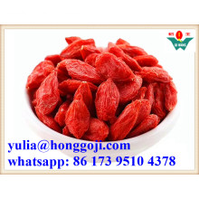 New Crop Dried Goji Berry Organic Good Price