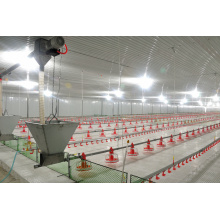 Chicken Poutry Cage Equipment