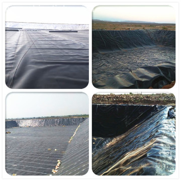 Shrimp Farm HDPE Toughened Geomembrane Pond Liner