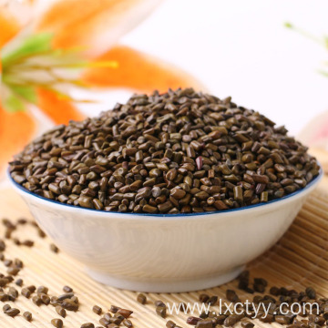 cassia seed for weight loss