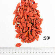 Certified Size 220 Organic Dried Goji