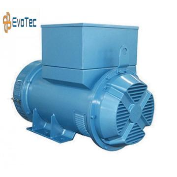 Brushless Marine Generator Voltage Excitation