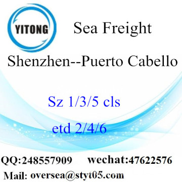 Shenzhen Port LCL Consolidation To Puerto Cabello