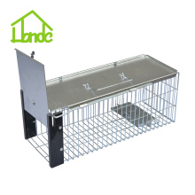 New Fashion Design for Small Cage Trap,Metal Rat Trap Cage,Humane Small Animal Traps,Outdoor Mouse Traps Manufacturers and Suppliers in China Humane Red Squirrel Trap supply to Cambodia Factory