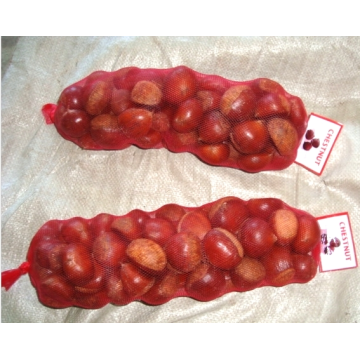 new crop fresh healthy chestnut for sale