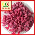 Ningxia Wild Goji Berry Dried Herbal Fruit