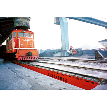 GCS Type Static Railway Scale