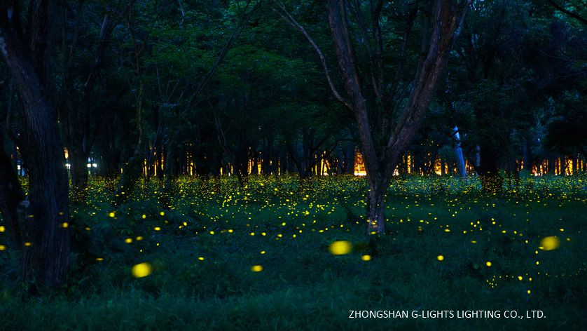 Fireflies Summer Forest Floor