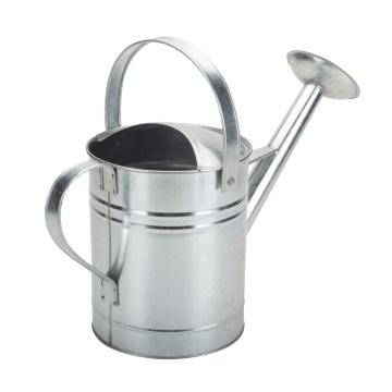 Homemade Galvanized Metal Watering Can Decorative