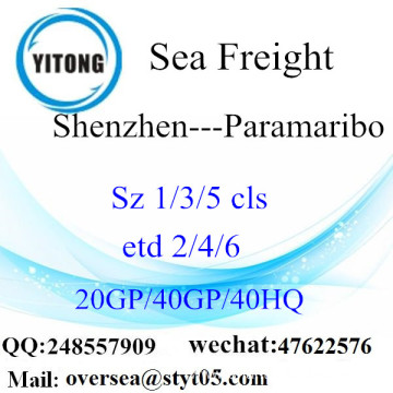 Shenzhen Port Sea Freight Shipping To Paramaribo