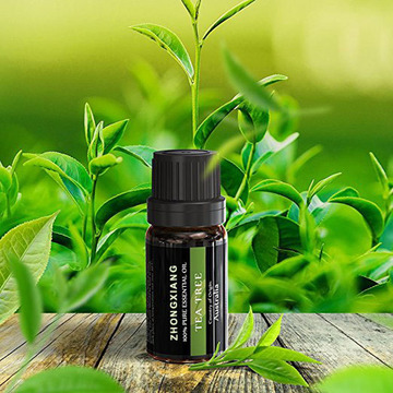 Factory supply Pure natural tea tree essential oil