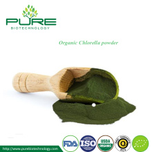Certified Organic Chlorella Powder Bulk Sale