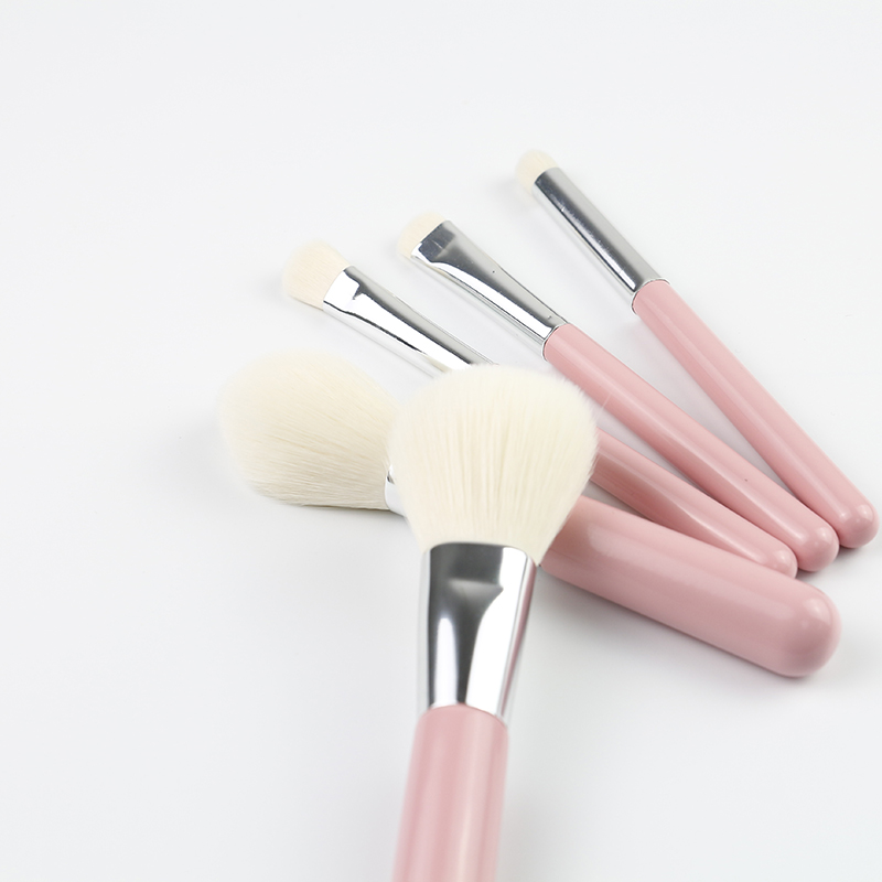 5 Pcs Makeup Brush
