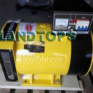 Goods high definition for 240 Volt Alternator 3KW ST Single Phase Power Generator Without Engine export to Spain Factory