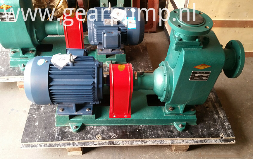diesel fuel oil pump