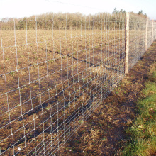 Heavy Galvanized Rural Farm Fencing