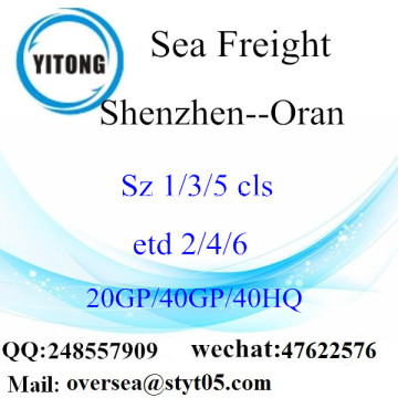 Shenzhen Port Sea Freight Shipping To Oran