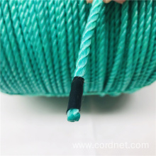 PP Splitfilm Raffia rope For Factory Actually Shoots