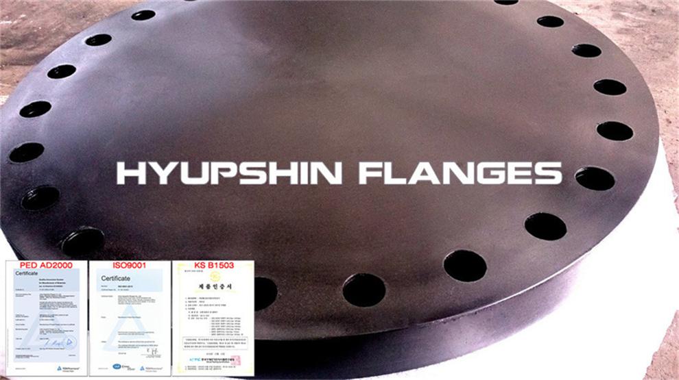 Hyupshin Flanges Ansi Asme 600 900 1500 2500 Blank