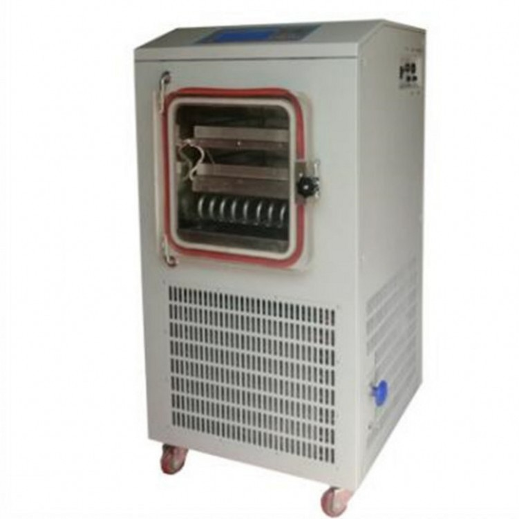 Small pilot type plant freeze dryer price