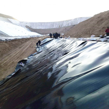 Dam Liner Double Textured Surface HDPE Geomembrane