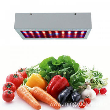 Low Power Consumption Led Grow Light