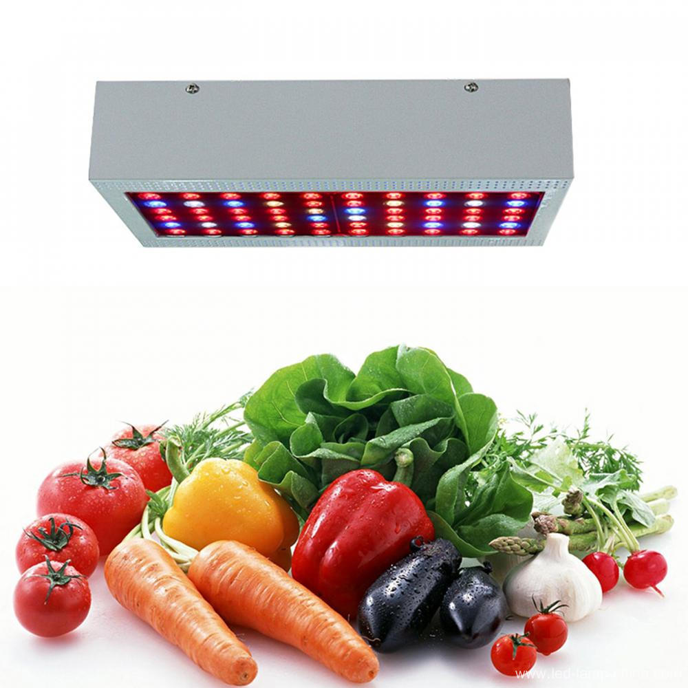 Diode LED 3W LED Grow Light