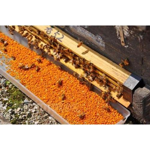 Bee pollen powder with best price
