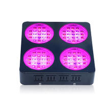 High PAR Value Grow Light