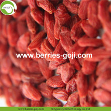 Factory Wholesale Nutrition Natural Malaysia Wolfberry