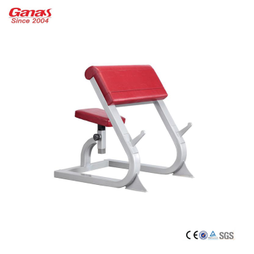China for Gym Fitness Equipment Gym Workout Equipment Professional Scott Bench export to Indonesia Factories