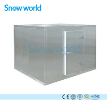 Snow world Common Ice Storage