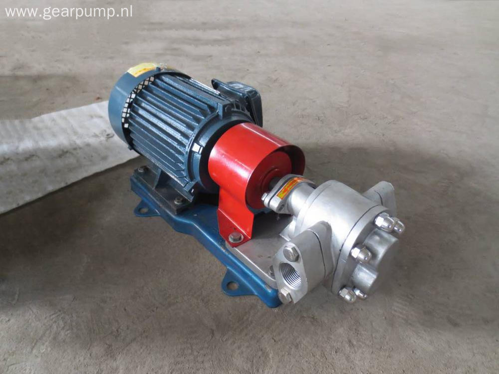 Low pressure rotary theory stainless steel cooking oil gear pump