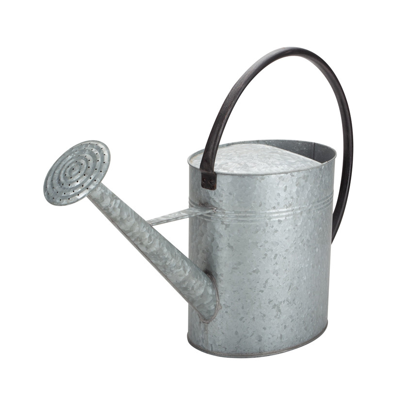 Galvanized Vintage Watering Can